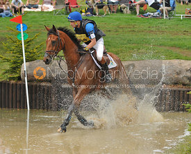 LULLY DES AULNES and Joris Vanspringel, Bramham Horse Trials, 2010