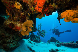 Scuba diver with underwater camera at overhang, Yucab Reef divesite, Cozumel, Mexico
