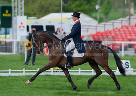 James Robinson and  Comanche - Dressage
