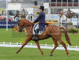 Michael Ryan and BALLYLYNCH SKYPORT - Dressage - Mitsubishi Motors Badminton Horse Trials 2013.