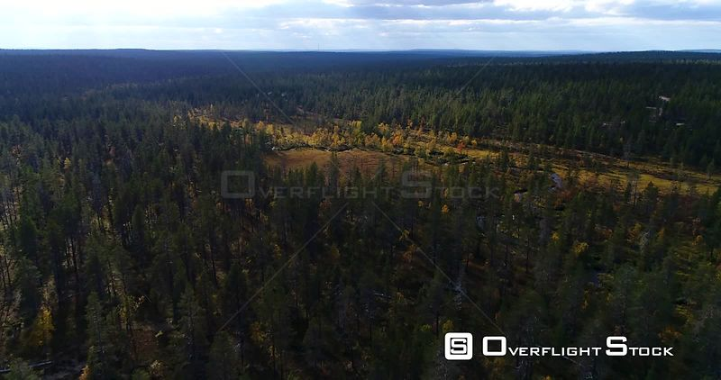 Swamp, Aerial View Over Arctic Forest, a Little River and a Bog, in Urho Kekkonen National Park, Near Kiilopaa Fjeld, in Lapland, on a Autumn Day, in Lappi, Finland
