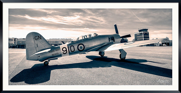 Hawker Sea Fury T.20 WG655