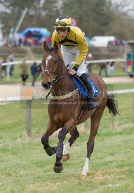 Johnny Bailey (Speckled Door), The Restricted Race - The Quorn at Garthorpe 21st April 2013.