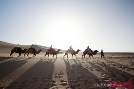 Camel caravan with tourists in the desert of Dunhuang, China