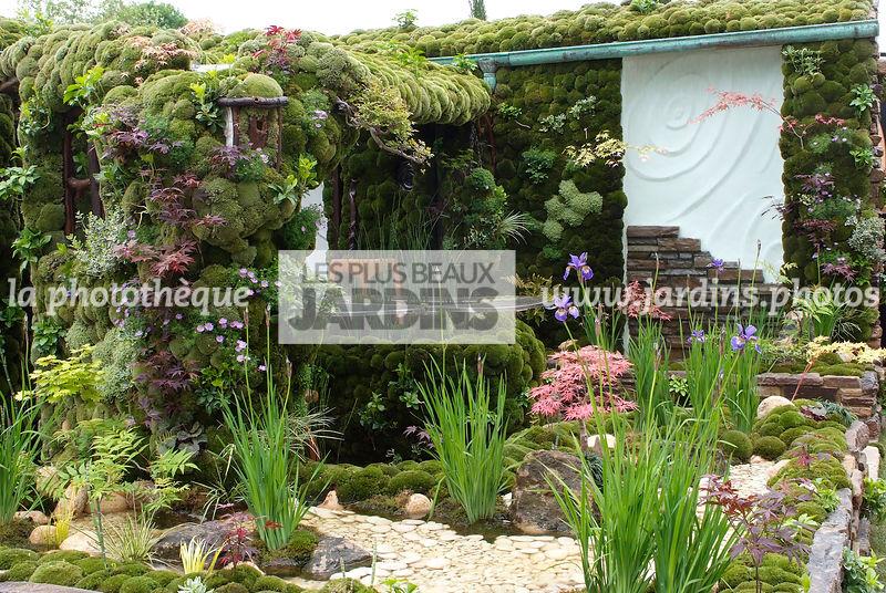 la phototh que les plus beaux jardins mur v g tal mur v g talis mousse jardin japonais. Black Bedroom Furniture Sets. Home Design Ideas