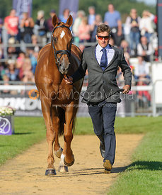 Tom Crisp and LIBERAL - The final trot up, Burghley Horse Trials 2013.