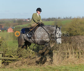 The Bernard Weatherill Diana of the Chase Cup 2013