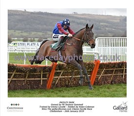 3:35 - The Galliardhomes.com Cleeve Hurdle Race photos