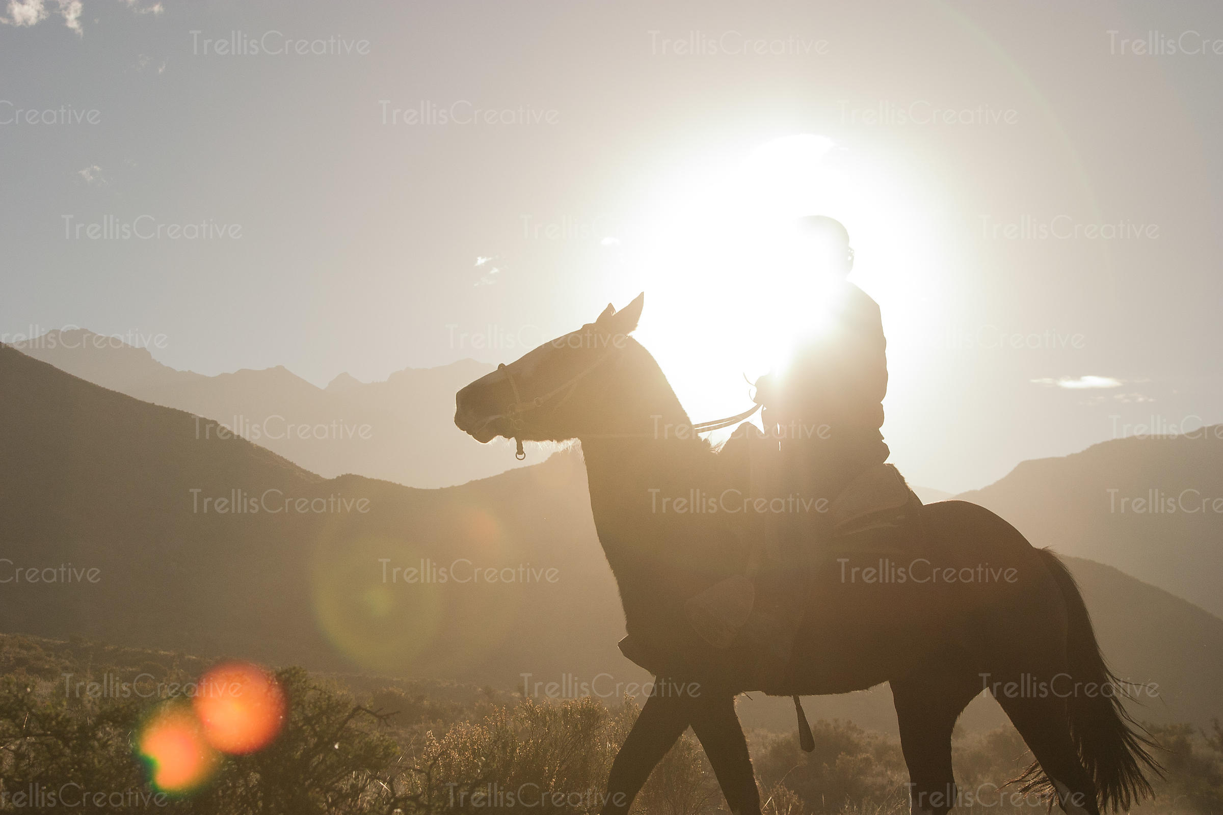 Horse and rider with sun obliterating detail of the rider.  Sillouette of horse is seen against mountains and sunlight.