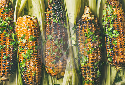 Flat-lay of grilled sweet corn with spices, close-up