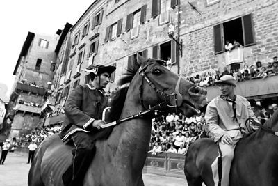 The Palio di Siena photos, pictures