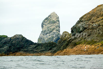 Stac An Armin and its Gannets , St Kilda archipelago ,Scotland
