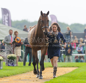 Hannah Sue Burnett and HARBOUR PILOT - The first vets inspection (trot up),  Land Rover Burghley Horse Trials, 3rd September 2014.