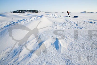 Skier on Sea Ice