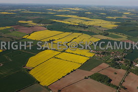 Hockerton Village aerial photograph showing the village and the fields of rape seed in flower surrounding the village