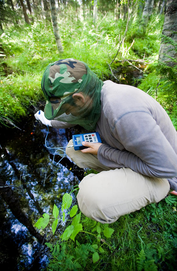 Monitoring insect species photos
