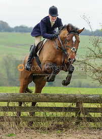 Gaby Cooke jumping a hunt jump at Ladywood Lodge - The Cottesmore Hunt at Ranksboro, 26-11-13.