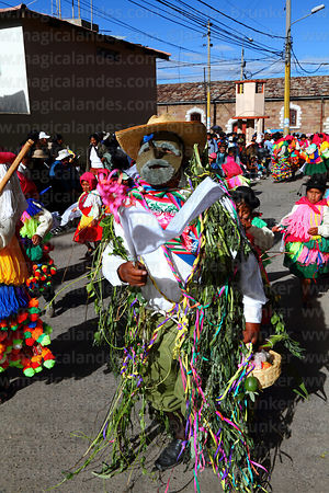 Masked dancer from Arapa village dressed in bean plants, Virgen de la Candelaria festival, Puno, Peru