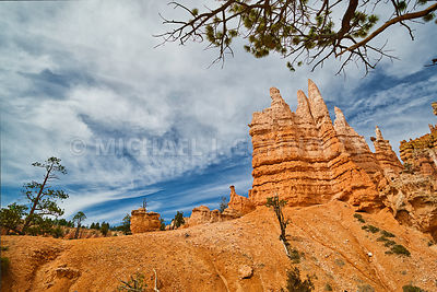 Hoodoos and Trees- Bryce Canyon, Utah