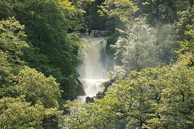 MYNACH FALLS photos