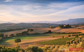 Landscape with rolling hills  at sunrise, Tuscany, Italy