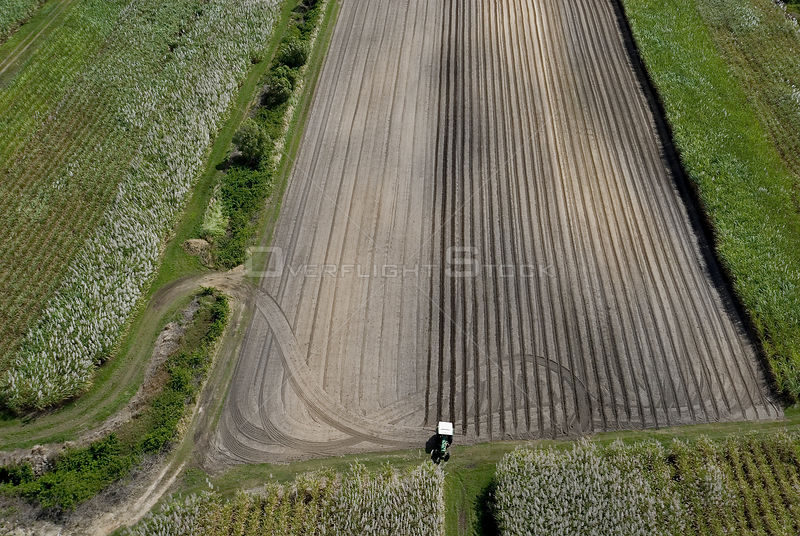 Aerial view of sugar cane fields being harvested, Philippines
