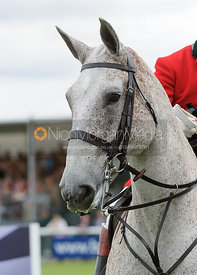 Whipper-In Harry Beeby - The Parade of Hounds,  Land Rover Burghley Horse Trials 2013.