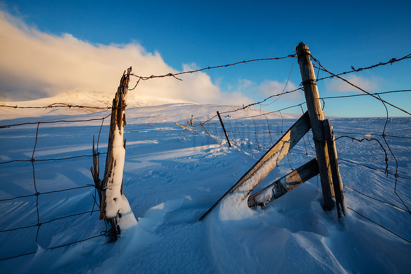 Wire Fence in a Snow-covered Field