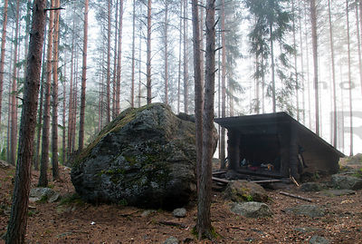Galcial Erratic Gives Shelter to Lean-to