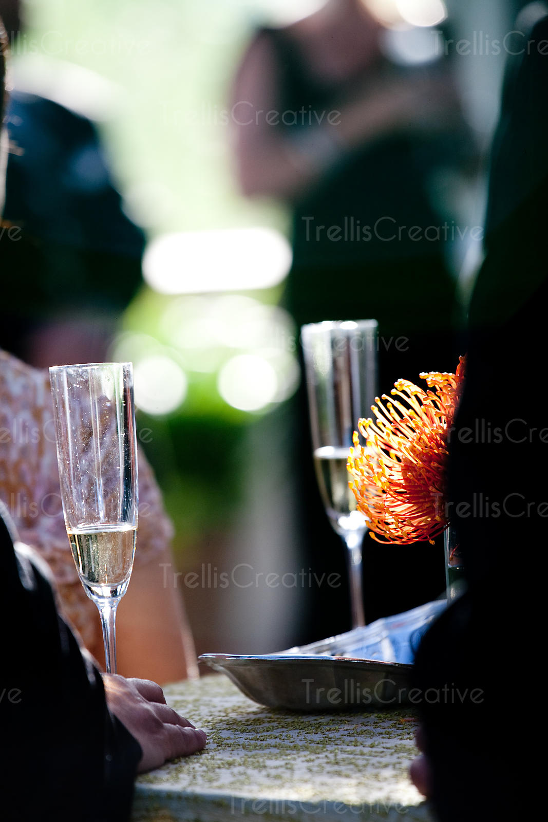 Sipping champagne at a black tie party outdoors