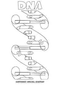 Colouring-In Page: DNA Molecule