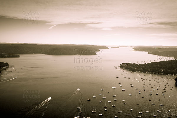 Pittwater Sepia