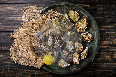 Assorted fresh Oysters, knife and lemon in tray on dark background