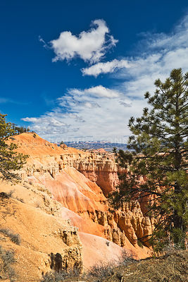Canyon's Edge- Bryce Canyon, Utah