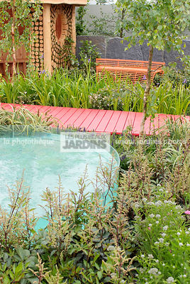 Border, Contemporary garden, Perennial, Pool, Digital, Path
