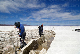 Salt workers digging out salt blocks, Salar de Coipasa, Oruro Department, Bolivia