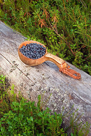 Bilberries in wooden cup