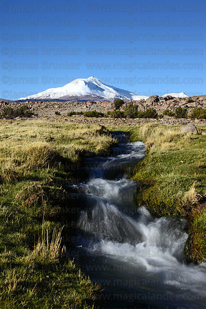 Mountain stream flowing across bofedal , Guallatiri volcano in background , Las Vicuñas National Reserve , Region XV , Chile
