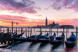 Gondolas in a row at dawn on St Marks basin, Venice