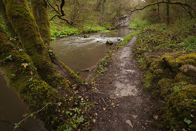 Footpath by the river Wye in Chee Dale
