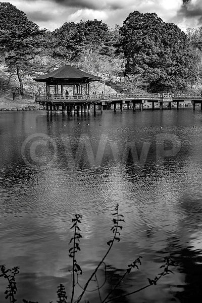 _W_P9218-Nara-the-pond-and-pagoda
