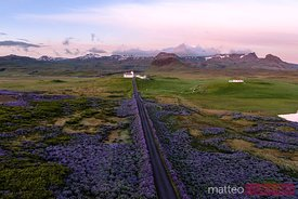 Aerial drone view of lupin fields and church, Snaefellsnes peninsula, Iceland