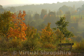 Autumn on Wenlock Edge