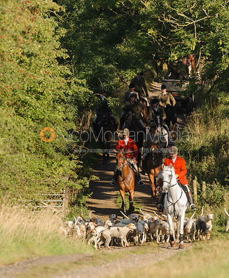 The Cottesmore Hunt at Furze Hill 10/9 photos