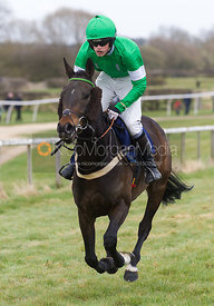 War of the World (George Henderson), The Open Maiden - The Quorn at Garthorpe 21st April 2013.