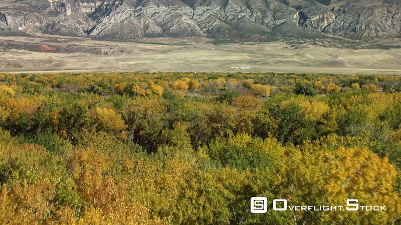 The seasons change as the Bighorn River valley showcases its golden Cottonwood and Aspen trees in the high desert of norhtern Wyoming