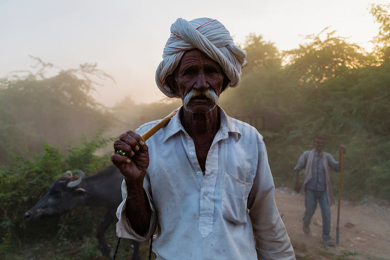Portrait of a Rabari Herder