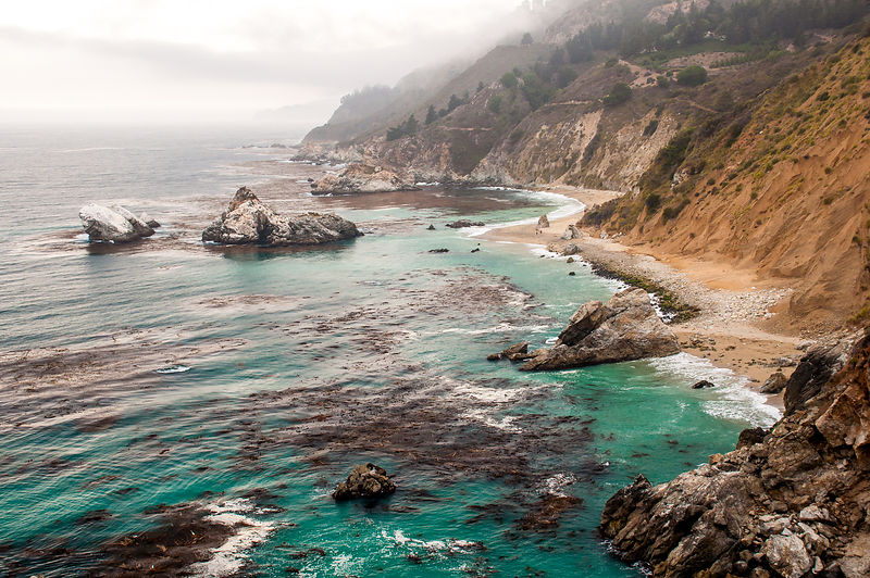 Big Sur, Near Route 1 and McWay falls,  California
