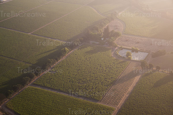 Aerial view of vineyards in Napa Valley, California