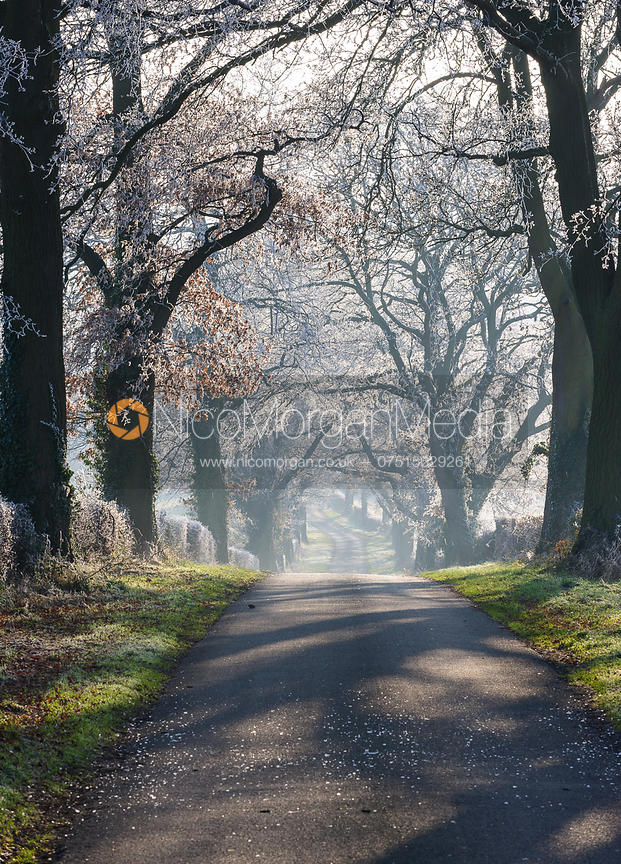 Lyndon Avenue aftr a hard frost, winter, Rutland